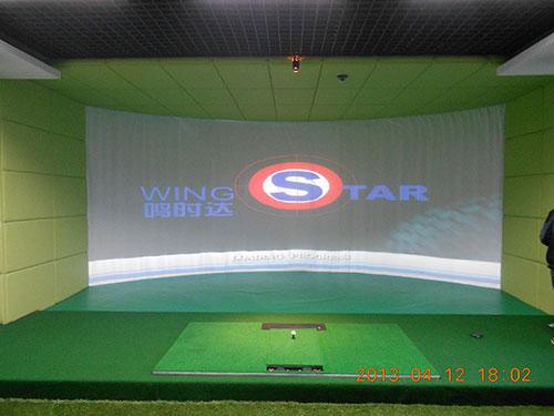 韩国原装进口WS3型模拟高尔夫