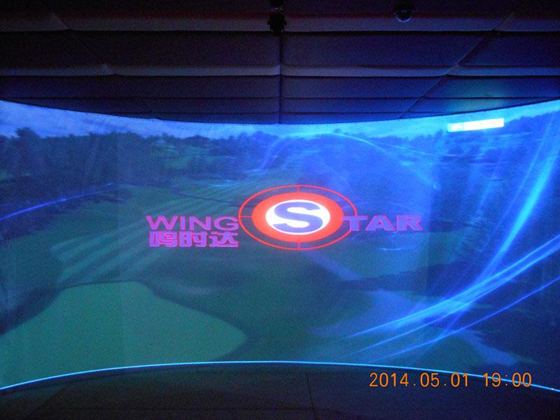 韩国原装进口WS5型模拟高尔夫